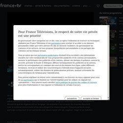 Science grand format - Notre corps, ce réseau social en streaming - Replay France 5