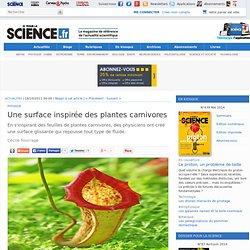 Une surface inspirée des plantes carnivores