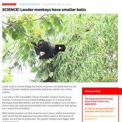 SCIENCE! Louder monkeys have smaller balls / Boing Boing