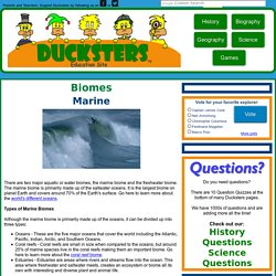 Science for Kids: Marine or Ocean Biome
