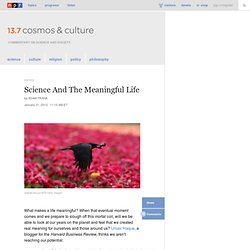 Science And The Meaningful Life : 13.7: Cosmos And Culture