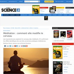 Méditation : comment elle modifie le cerveau