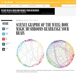 Science Graphic of the Week: How Magic Mushrooms Rearrange Your Brain