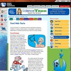 Food Web: Facts (Science Trek: Idaho Public Television)