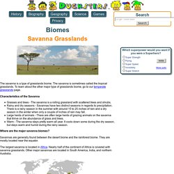 Science for Kids: Savanna Grasslands Biome