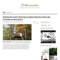 Science du vivant : Dom'up, la cabane dans les arbres qui s'installe en deux jours!