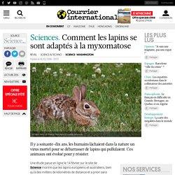 COURRIER INTERNATIONAL 19/02/19 Comment les lapins se sont adaptés à la myxomatose.