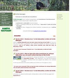 e-Sciences : Forêts Sauvages