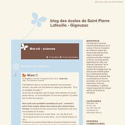 Mot-clé - sciences - blog des écoles de Saint Pierre Lafeuille - Gigouzac