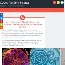 Art et Sciences #7 Microbial Art et art bactérien : des œuvres d'art dans des boites de Pétri