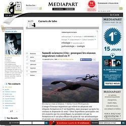 Samedi-sciences (116) : pourquoi les oiseaux migrateurs volent en V