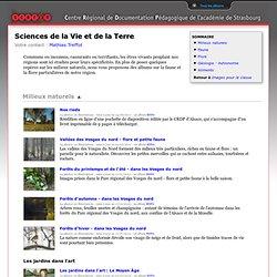 SVT images CRDP Alsace.