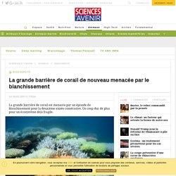 La grande barrière de corail de nouveau menacée par le blanchissement - Sciencesetavenir.fr