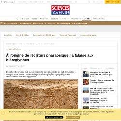 Découverte exceptionnelle de proto-hiéroglyphes gravés sur une falaise en Égypte - Sciencesetavenir.fr