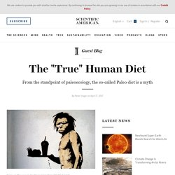 "The ""True"" Human Diet - Scientific American Blog Network"