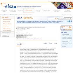 EFSA 27/06/13 Technical specifications on harmonised epidemiological indicators for biological hazards to be covered by meat inspection of domestic sheep and goats.