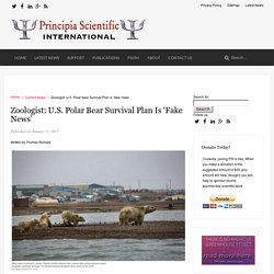 Zoologist: U.S. Polar bear Survival Plan is 'fake news' - Principia Scientific International