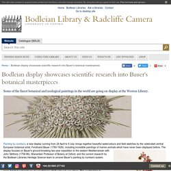 Bodleian display showcases scientific research into Bauer's botanical masterpieces