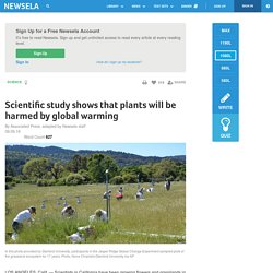 Scientific study shows that plants will be harmed by global warming