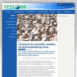 EPIZONE - 2014 - Technical & scientific studies on Schmallenberg virus