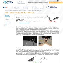 Fondation Airbus Group, mécène scientifique - Recherche-fondamentale - Projets-de-recherche - Securite - Objet-volant-mimant-l-insecte