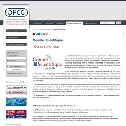 Comité Scientifique - DFCG.fr, le site institutionnel de l'Association nationale des directeurs financiers et de contrôle de gestion
