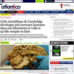 Cette scientifique de Cambridge développe 300 cerveaux humains dans son laboratoire et voilà ce qu'elle compte en faire