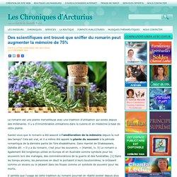 Des scientifiques ont trouvé que sniffer du romarin peut augmenter la mémoire de 75% Les Chroniques d'Arcturius