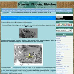 Des scientifiques affirment que des fossiles dans une météorite indiquent une vie extraterrestre
