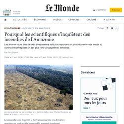 Pourquoi les scientifiques s'inquiètent des incendies de l'Amazonie