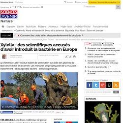 SCIENCES ET AVENIR 06/01/16 EXCLUSIF. Des scientifiques accusés d'avoir introduit la bactérie Xylella en Europe