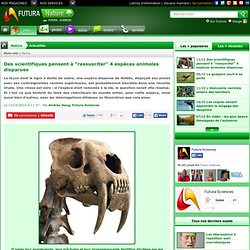 """Des scientifiques pensent à """"ressusciter"""" 4 espèces animales disparues"""