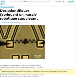 Des scientifiques fabriquent un muscle robotique surpuissant