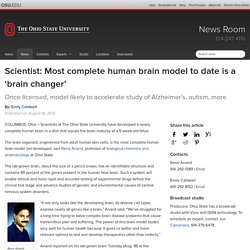 Scientist: Most complete human brain model to date is a 'brain changer'