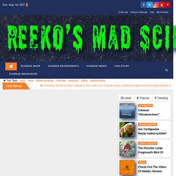 Reeko's Mad Scientist Lab - Science Experiments