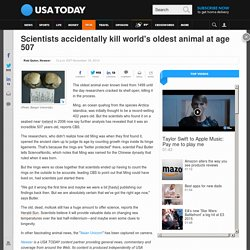 Scientists accidentally kill world's oldest animal at age 507