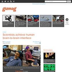 Scientists achieve human brain-to-brain interface