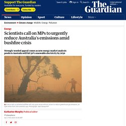 Scientists call on MPs to urgently reduce Australia's emissions amid bushfire crisis