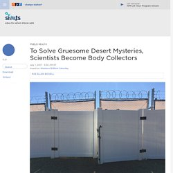Scientists Become Body Collectors To Solve Mysteries Of Decomposition