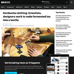 Kombucha clothing: Scientists, designers work to make fermented tea into a textile