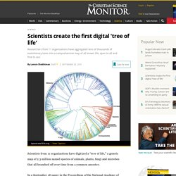 Scientists create the first digital 'tree of life'