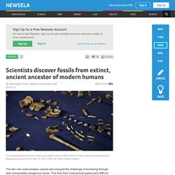 Scientists discover fossils from extinct, ancient ancestor of modern humans