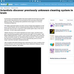 Scientists discover previously unknown cleaning system in brain