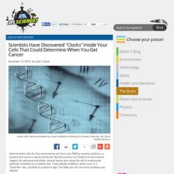 """Scientists Have Discovered """"Clocks"""" Inside Your Cells That Could Determine When You Get Cancer"""