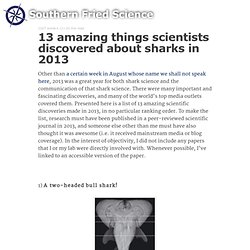 13 amazing things scientists discovered about sharks in 2013