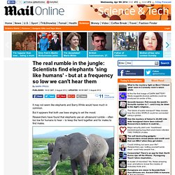 The real rumble in the jungle: Scientists find elephants 'sing like humans' - but at a frequency so low we can't hear them