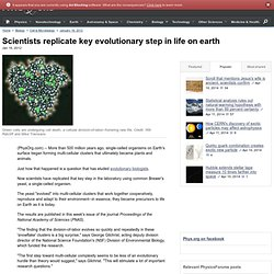 Scientists replicate key evolutionary step in life on earth