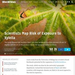 OLIVE OIL TIMES 04/04/19 Les scientifiques cartographient le risque d'exposition à Xylella