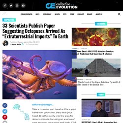 """33 Scientists Publish Paper Suggesting Octopuses Arrived As """"Extraterrestrial Imports"""" To Earth"""