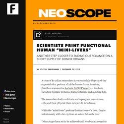 "Scientists Print Functional Human ""Mini-Livers"""